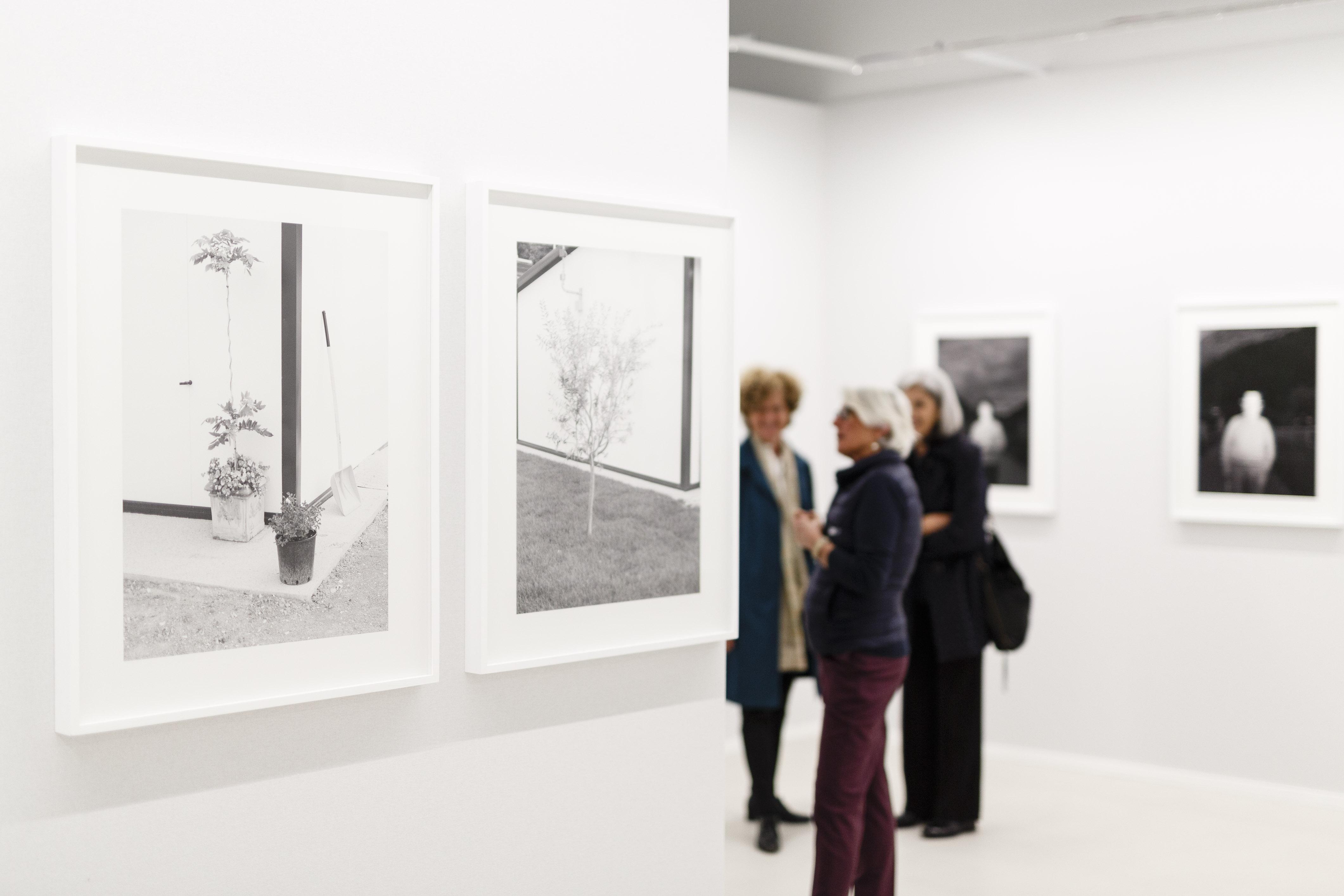 Terre in movimento | Photo © Musacchio, Ianniello & Pasqualini, courtesy Fondazione MAXXI
