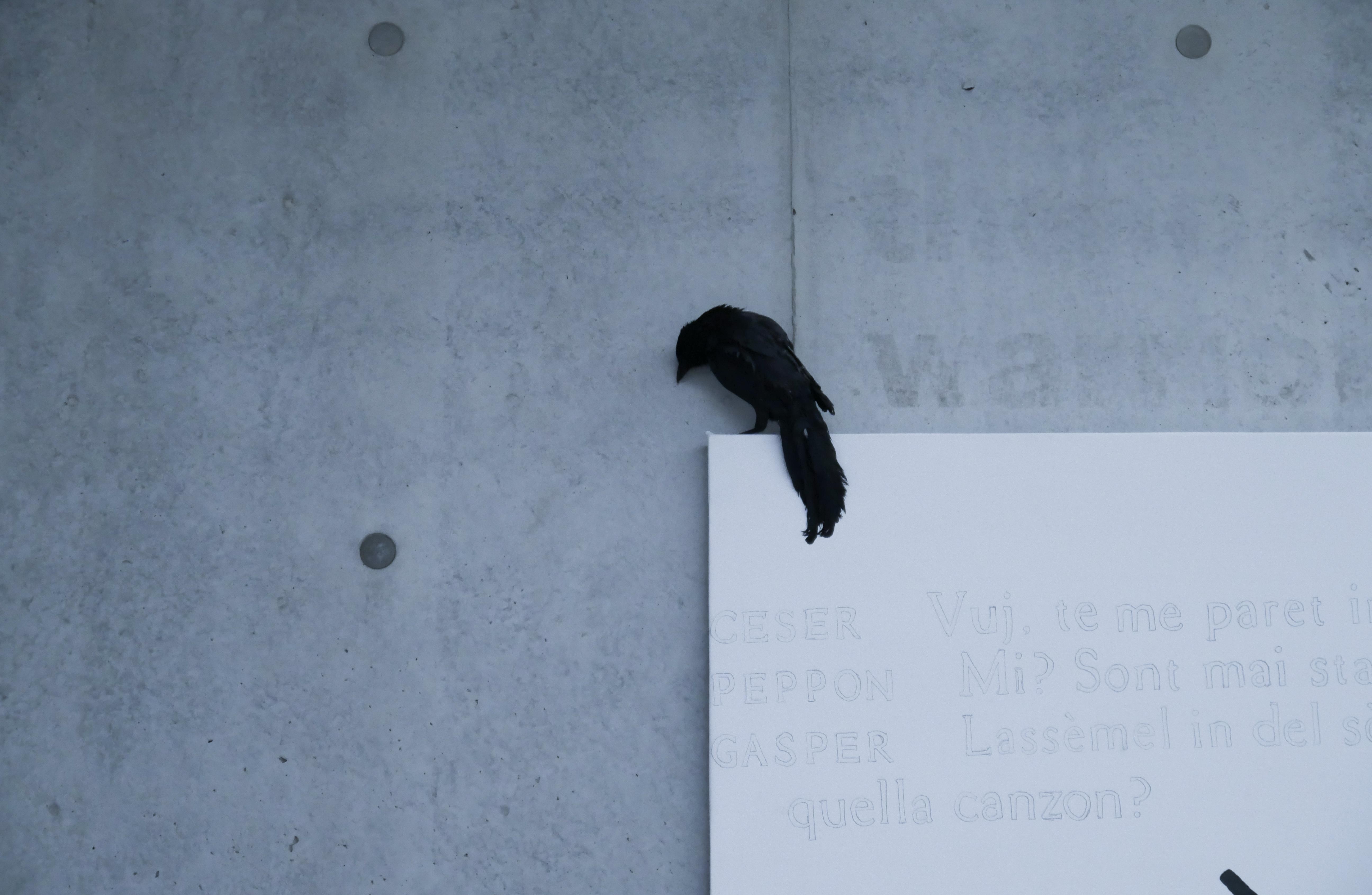 Foto © Fondazione MAXXI